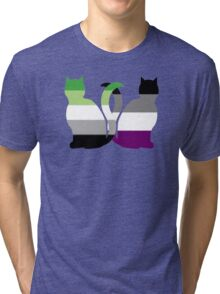 Aro Ace Pride Cats Tri-blend T-Shirt