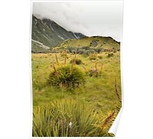 Mt Cook  Poster