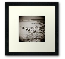 { searching dunes } Framed Print