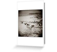 { searching dunes } Greeting Card