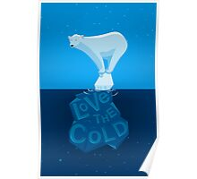 Love the Cold Poster