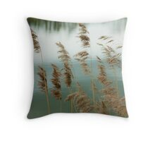 Reeds Coloured Throw Pillow