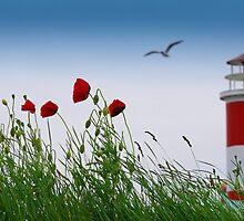 Sommer Gefühle am Leuchtturm by Aviana