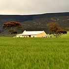 The Farm House by Gideon du Preez Swart