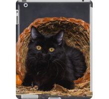 Fall Portrait - Black Cat in a Cornucopia - Animal Rescue Portraits iPad Case/Skin