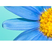 Yellow & Blue Photographic Print