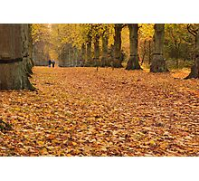 Autumn Walk Photographic Print