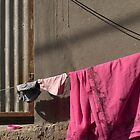 Pink sari and a pink plastic lid by Marjolein Katsma