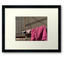Pink sari and a pink plastic lid Framed Print