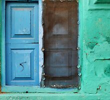 Blue doors in a (very) green wall by Marjolein Katsma