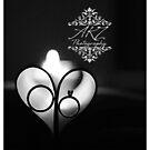 Love in the Dark by Ashli Zis