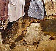 Rug washing day (2) by Marjolein Katsma