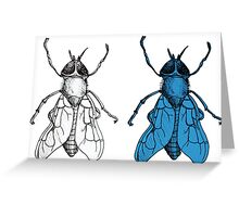 One Fly, Two Fly Greeting Card