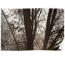 Through the misty willow Poster