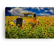 Yellow fields of happiness Canvas Print