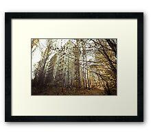 Overtaken ~ Pripyat  Framed Print
