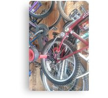 Ready for a Bike Ride? Metal Print