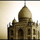 Taj Mahal Assembly Hall by deborah zaragoza