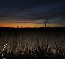 A blazing sky..  by HopefulHarrie