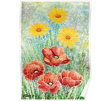 POPPIES AND YELLOW DAISIES - AQUAREL Poster