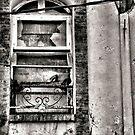 Derelict Noumea by Andrew Woodman