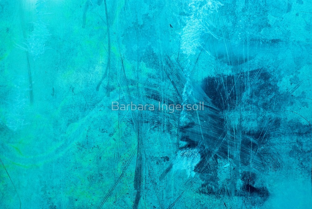 Sea Splash by Barbara Ingersoll