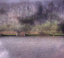 On Lough Leane by Carol Bleasdale