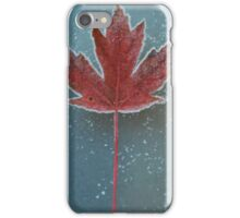 Frosted Leaf iPhone Case/Skin