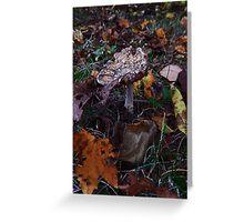 Mushroom Kingdom (3919) Greeting Card