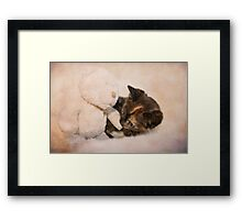 Seriously cute! Framed Print