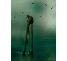 In The Ocean Mist Photographic Print