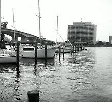City Marina by Bob Hardy