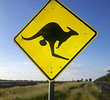 Beware of the Roo. by CapturedByKylie