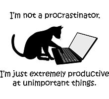 I'm Not a Procrastinator - Cat Photographic Print