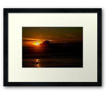 Bird at Sunset Framed Print