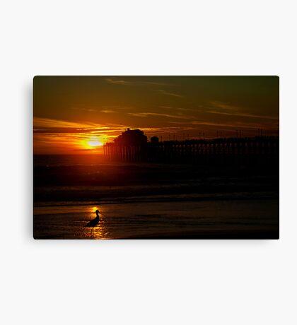 Bird at Sunset Canvas Print