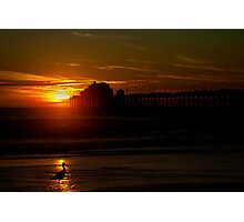 Bird at Sunset Photographic Print