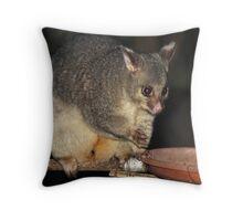 Young Female Brushtail Possum Throw Pillow
