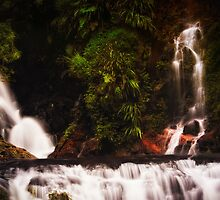 The Magic of Elabana Falls by Frank Jonen