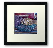 cat on a cushion  Framed Print