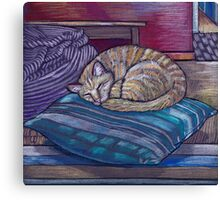 cat on a cushion  Canvas Print