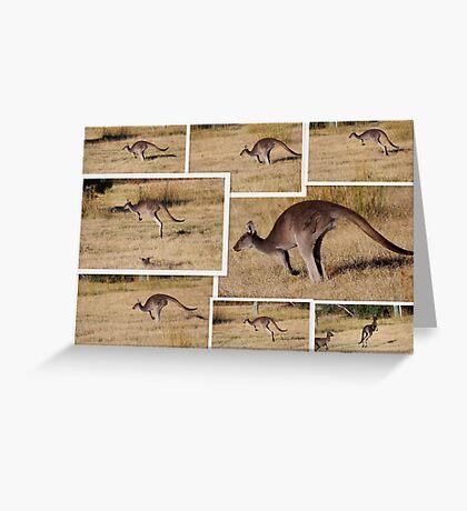 Kangaroos  Hopping Greeting Card