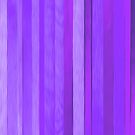Mood Combo Purple Shades by Jeremy Aiyadurai