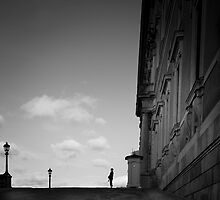 On Guard by peterlevi