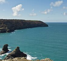 Cornish Seasscape St Agnes by Brian Roscorla