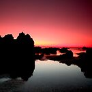 Pink sea by Thomas Anderson