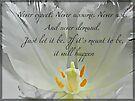 Wisdom by KatarinaD