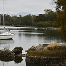 Moruya River by Terry Everson