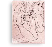 Insomubus Canvas Print