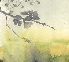 Blossom by Matthew Berry